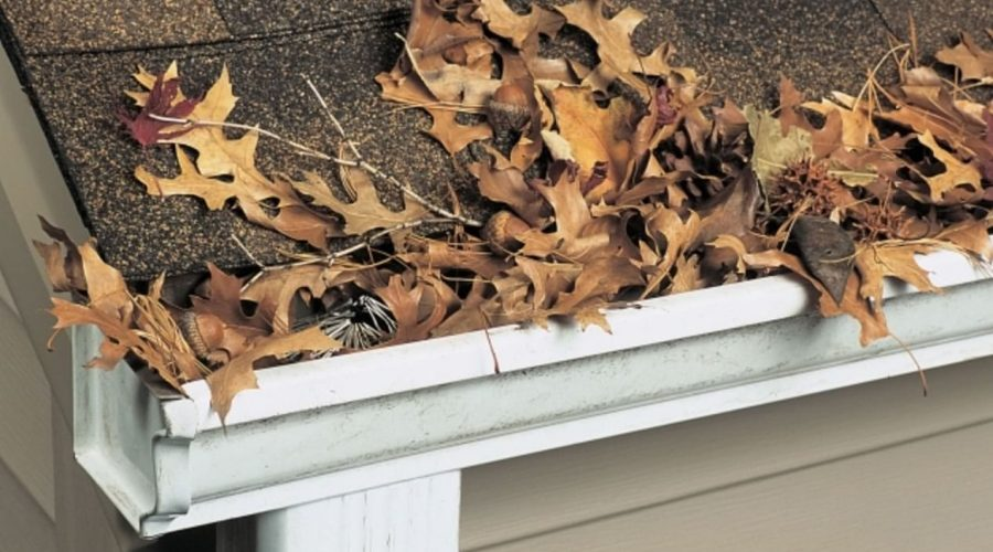 gutter cleaning erie pa